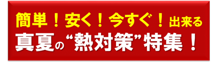 29.08 ニュースレター8月号
